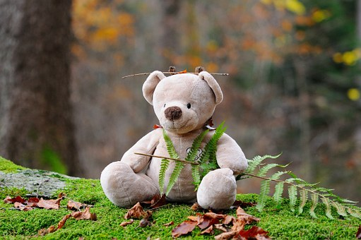 Ours En Peluche, Bear