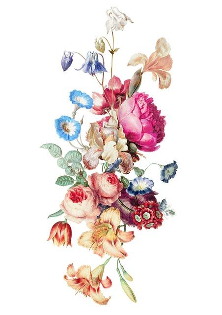 Fleur Vintage Floral  Free image on Pixabay