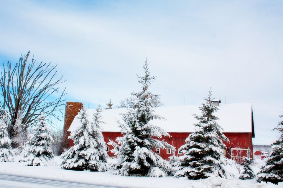 Winter Animal Wallpaper Winter Barn Snow Rural Free Photo On Pixabay