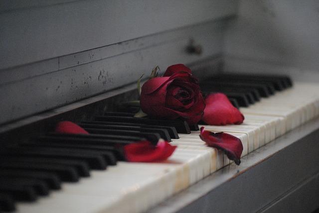 Kostenloses Foto Klavier Rose Rot Blume Liebe