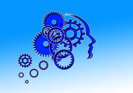 Testa, Cervello, Uomo, Faccia, Umano, Fronte