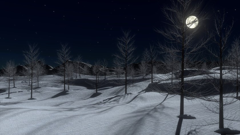 Snow, Night, Moon, Cold, Winter, Trees, Landscape