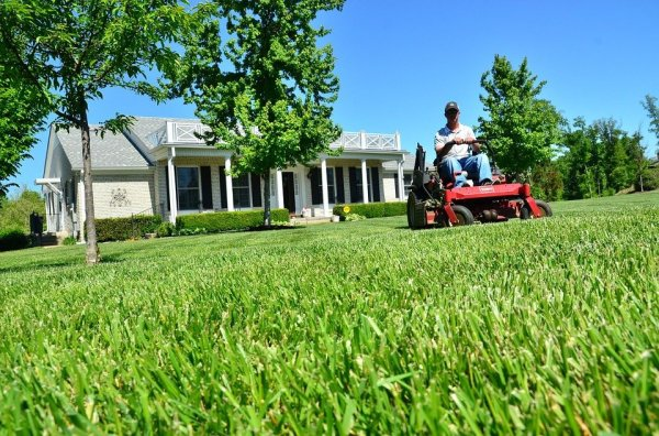 lawn care maintenance free