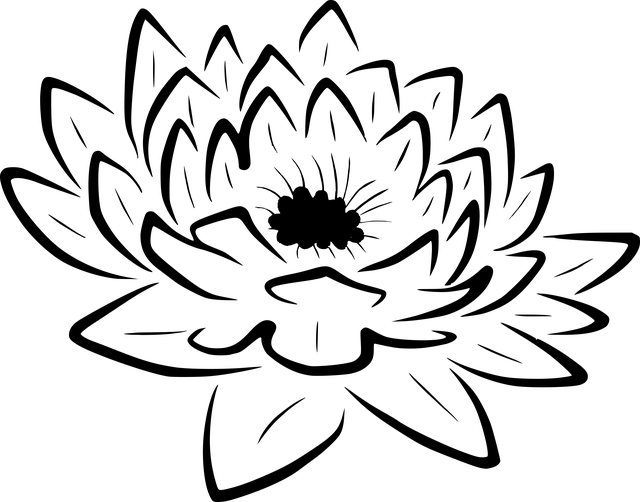 Lily Flower Contour  Free image on Pixabay