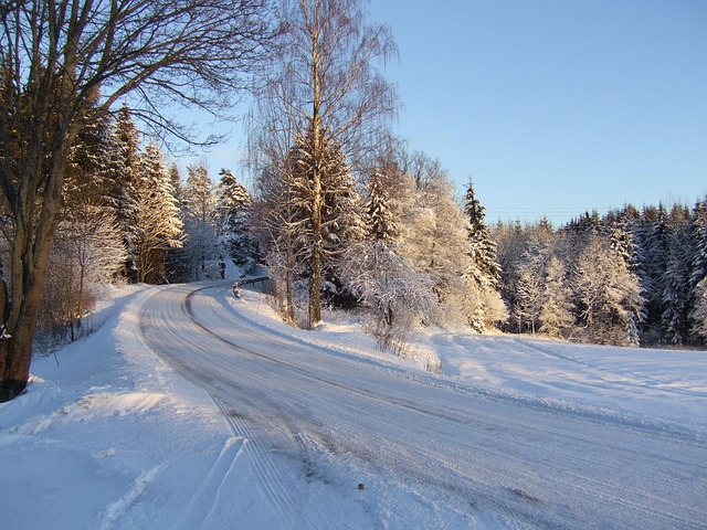 Norway Winter Snow Free Photo On Pixabay