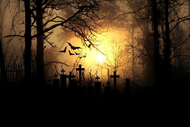 Fall Witch Wallpaper Kostenloses Foto Mondschein Nacht Horror Vollmond