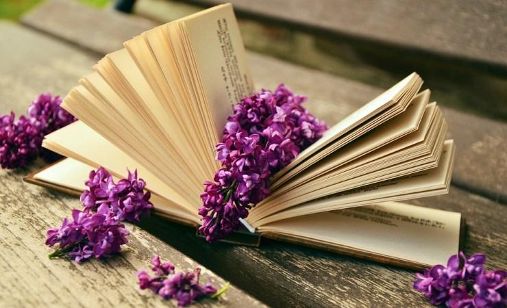 Książki, Odczyt, Relaks, Liliowy, Bank, Stary