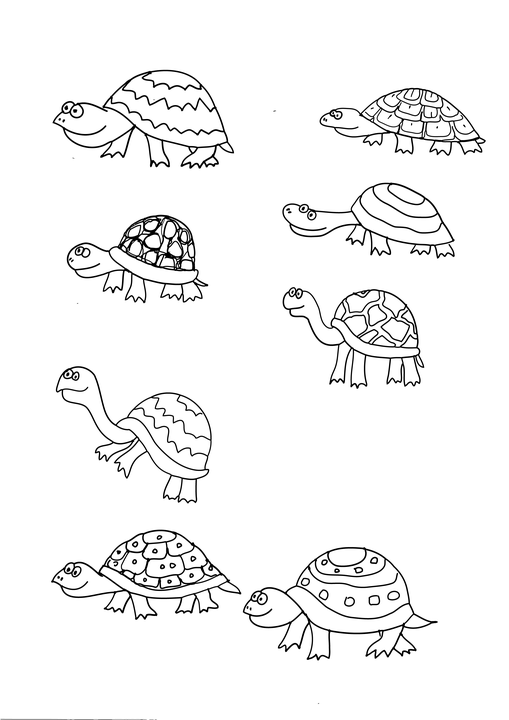 Turtle Little Coloring Book · Free image on Pixabay
