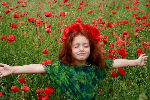 Girl, Poppies, Red, Red Hair, Camp