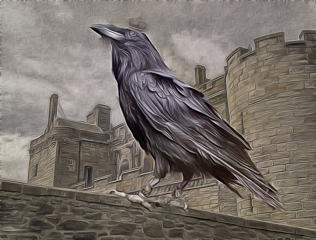 The King Of Crows Raven Castle Free Image On Pixabay