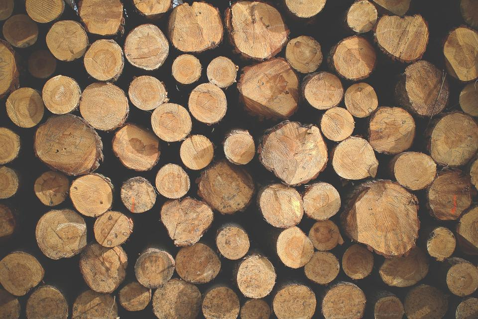 logs texture pattern free