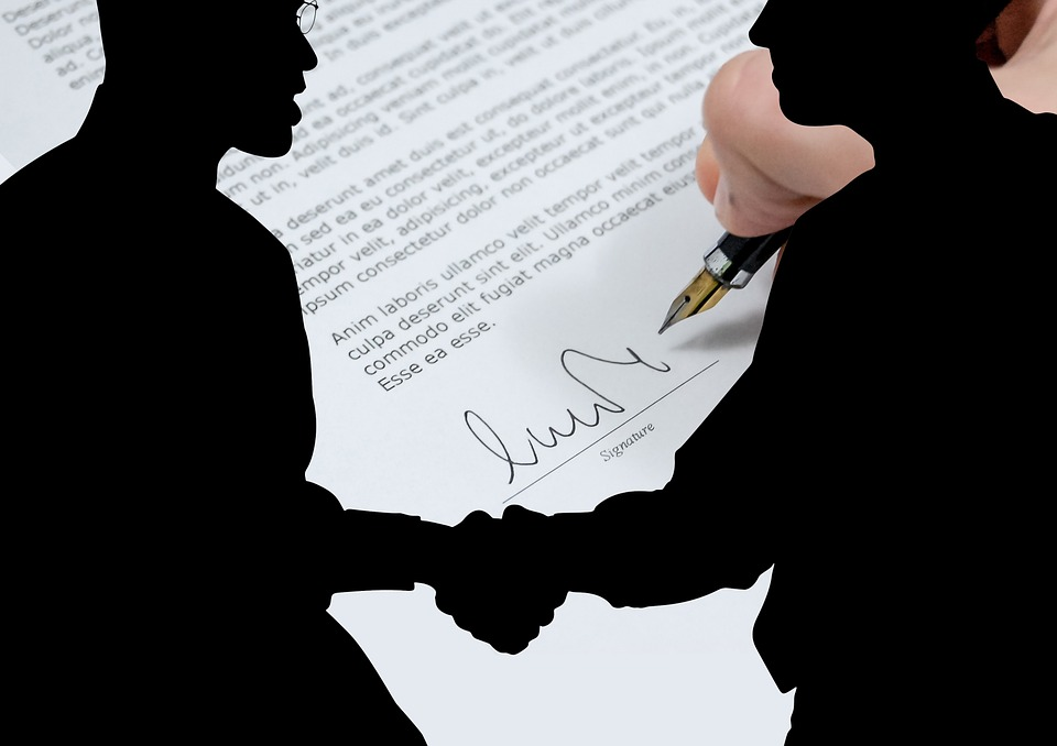 Man, Silhouette, Shaking Hands, Contract