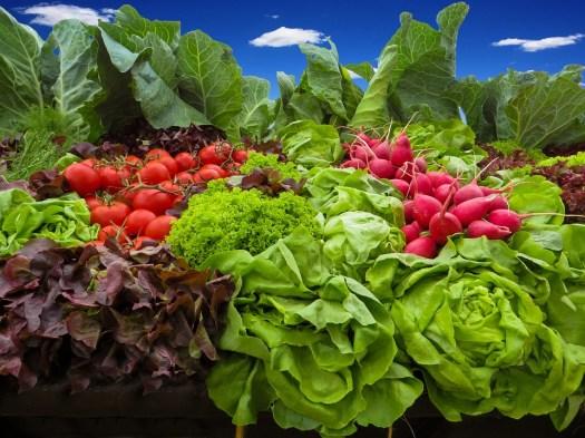 Verdure, Pomodori, Ravanelli, Insalata, Alimentari