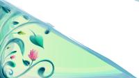 Half Frame Design Flower  Free image on Pixabay
