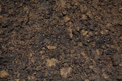 mud on the farm