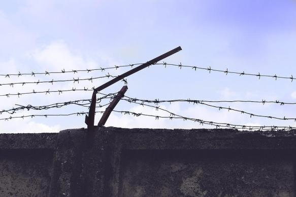 Freedom, Will, Prison, Barbed Wire, Fencing, Run