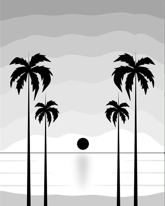 Gambar Pantai Hitam Putih : gambar, pantai, hitam, putih, Beach, Vector, Graphic, Pixabay