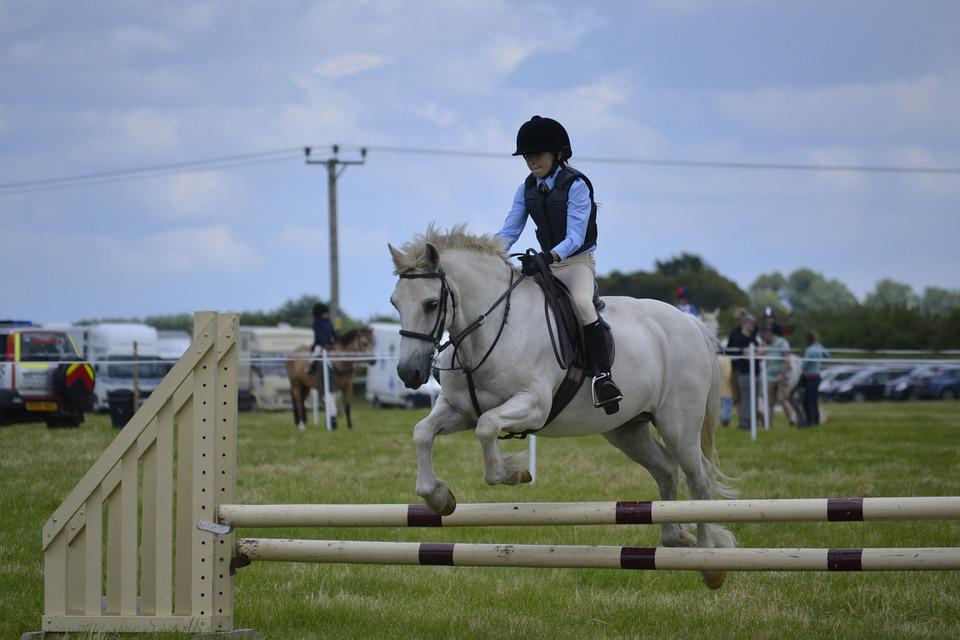 White Horse, Jumping, Child, White, Horse Jumping