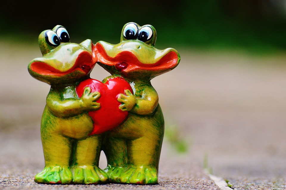 Free Photo Frogs Pair Funny Love Heart Free Image