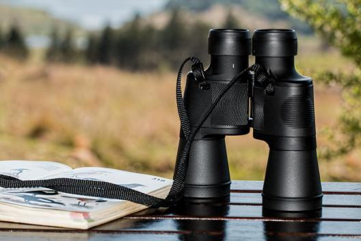 Binoculars, Birdwatching, Spy Glass, Spying, Spy, Watch