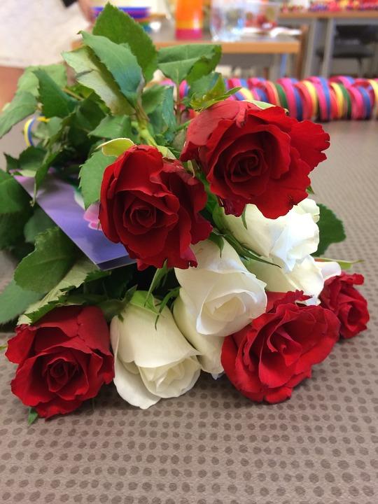 Gambar Bunga Ros : gambar, bunga, Roses, Flowers, Photo, Pixabay