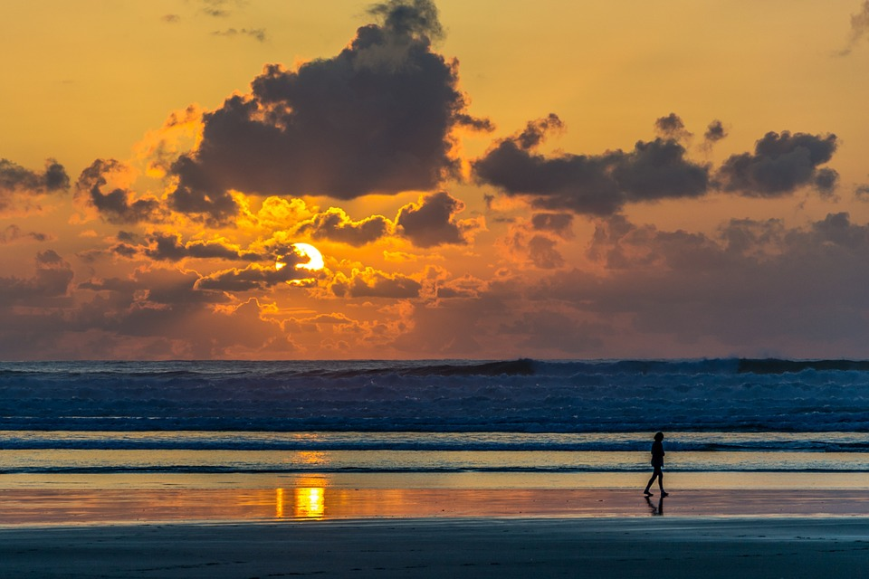 Girl Walking Alone Hd Wallpapers Free Photo Beach Person Walking Sunset Free Image On