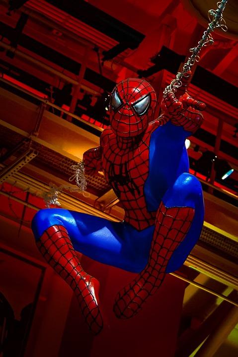 Lion Animal Wallpaper Spiderman Hero 183 Free Photo On Pixabay