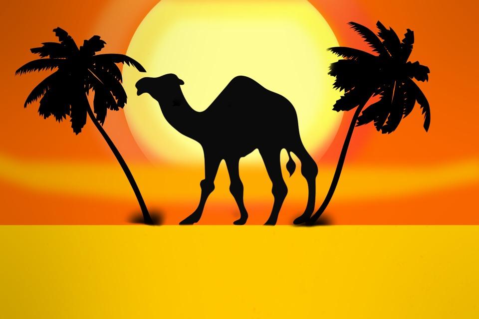 Kostenlose Illustration Kamel Palme Wste Sonne