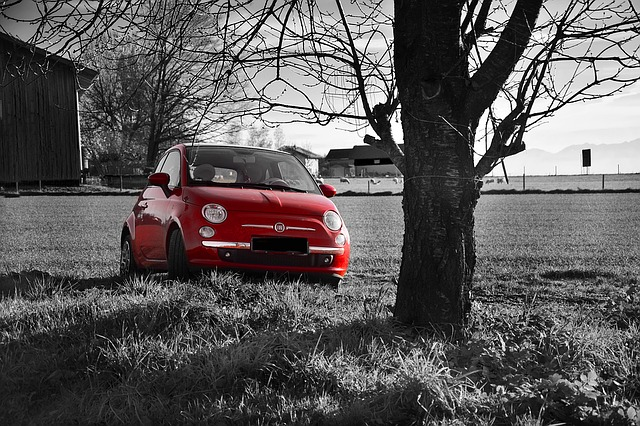 Wallpaper Craft Cars Free Photo Fiat 500 Red Field Free Image On Pixabay