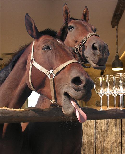 Pub Horse Bar · Free Photo On Pixabay