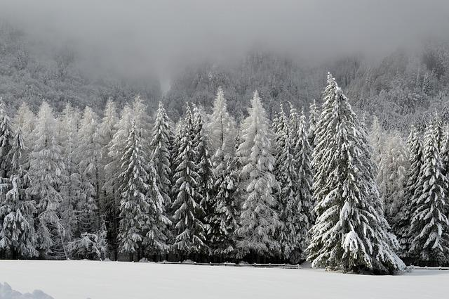 Free Photo Winter Scene Mountain Wonderland Free