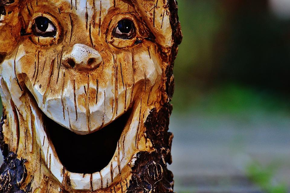 Log Face Fash  Free photo on Pixabay
