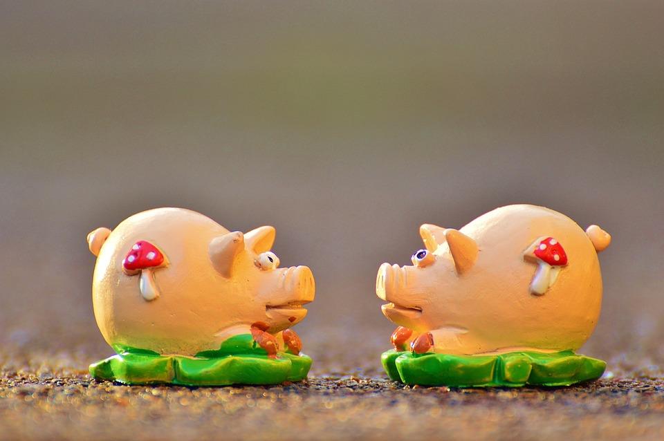 Glck Schweinchen Glcksschwein  Kostenloses Foto auf Pixabay
