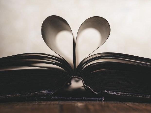 紙, ロマンス, シンボル, バレンタイン, 愛, 本, オープン, 学ぶ, ページ, ライブラリ, スタイル