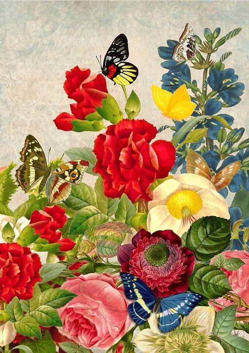 Free illustration Vintage Flower Butterfly Art  Free