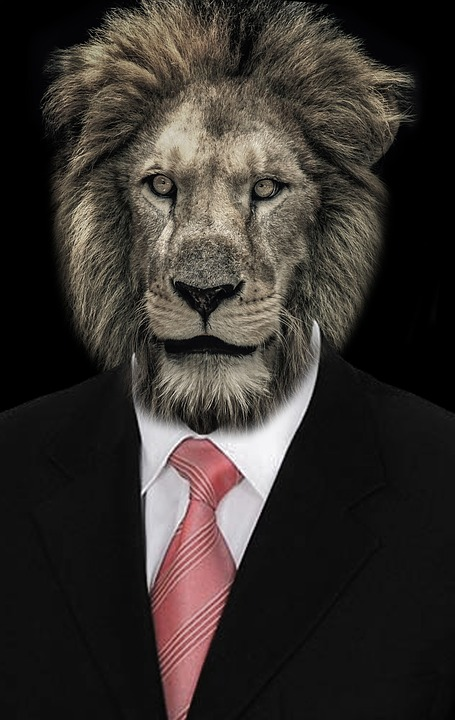 Lion Animal Wallpaper Tie Classical Costume 183 Free Image On Pixabay