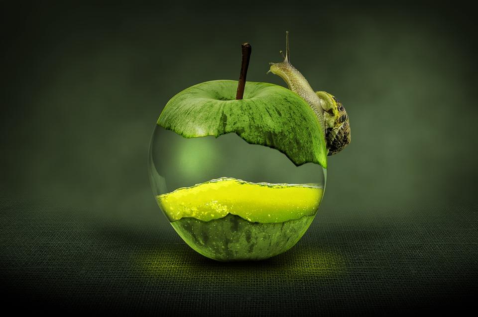 apple green fruit free