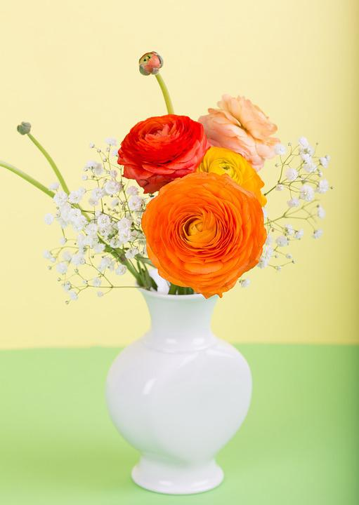 Flower Ranunculus Vase  Free photo on Pixabay