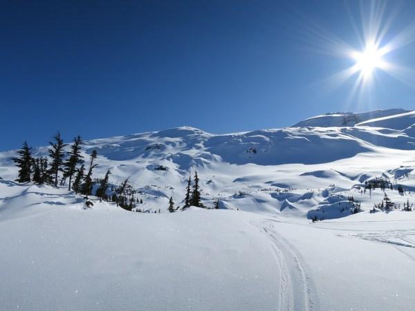 free winter snow landscape