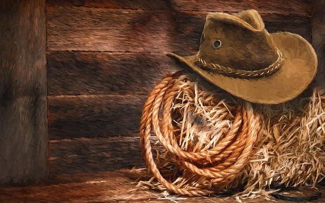 Free Illustration Lasso Hat Hay Barn Western Free