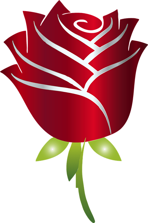 Stylized Rose Flower Free vector graphic on Pixabay