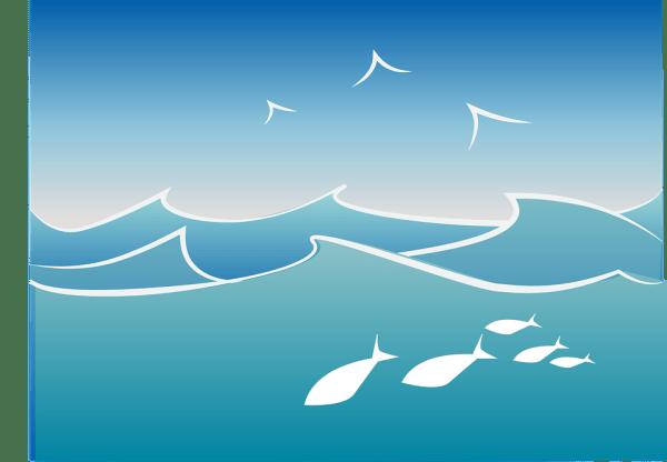 ocean fish wave free vector graphic