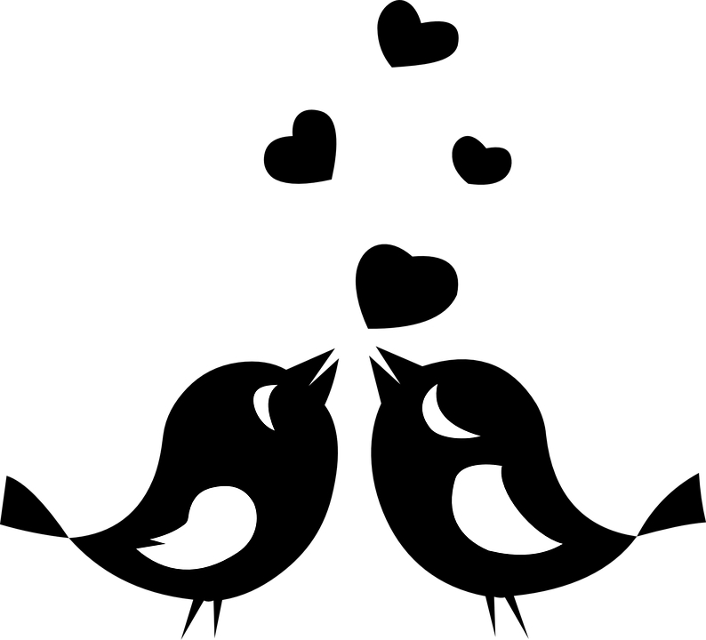 Download Love Birds Animals - Free vector graphic on Pixabay