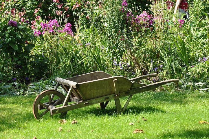 carriola, uno strumento utile nell'orto e in giardino