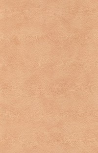 Free photo: Leather, Textures, Background - Free Image on ...