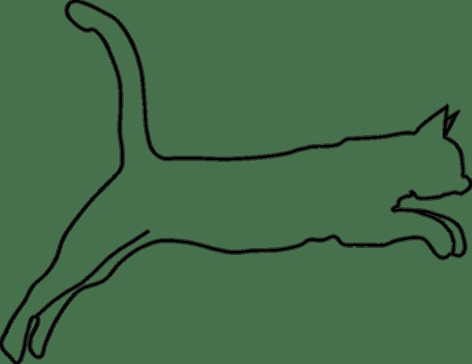 Cougar Paw Clipart. Cougar Paw Print Clip Art Free ClipArt