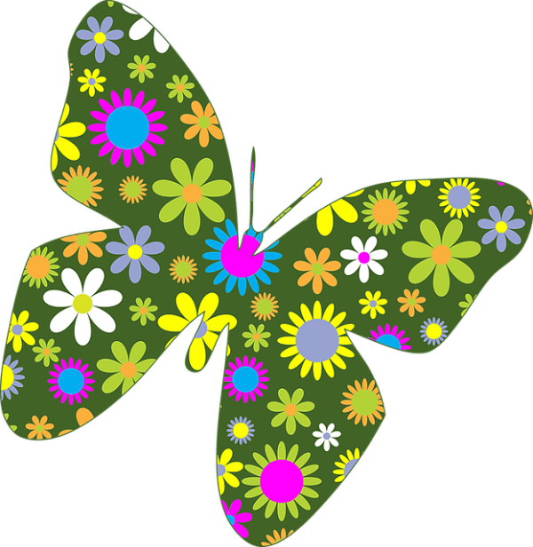 butterflies butterfly floral