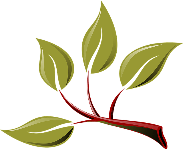 Branch Eco Green  Free vector graphic on Pixabay