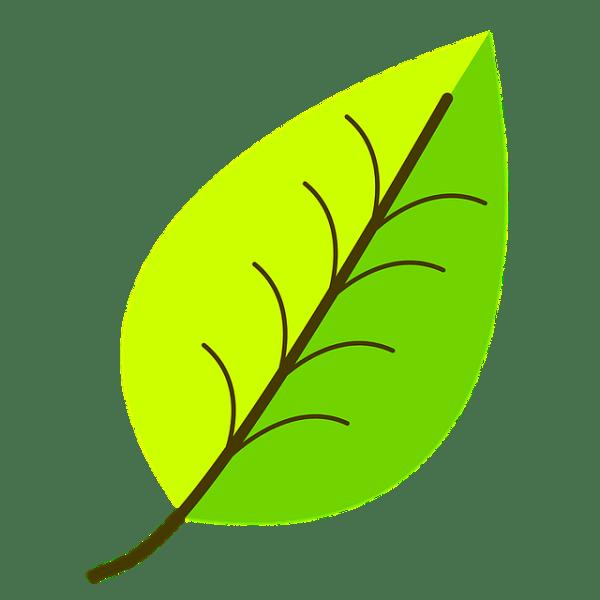 green leaf pattern free vector
