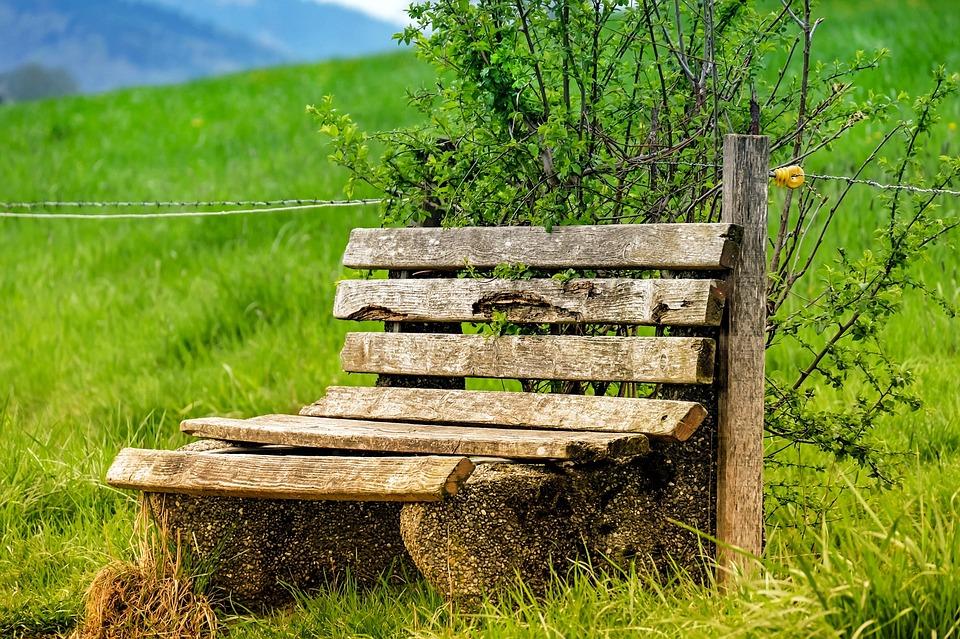 bench bank wood free